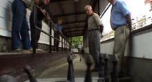 03de06-Euskal Herria:Los demenciales chicos acelerados