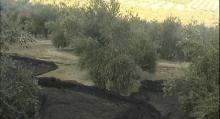 Metamorfosis y fortalezas (Ignacio Guarderas) Vimeo